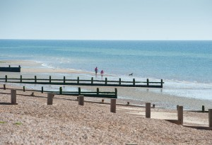 Dog Friendly Holiday Houses in the UK