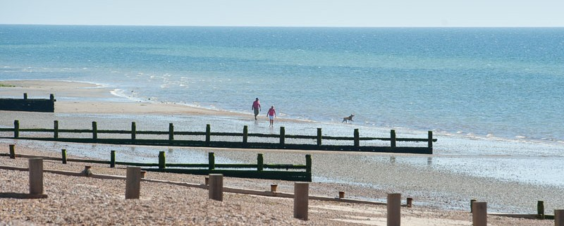Dog Friendly beach houses in West Sussex